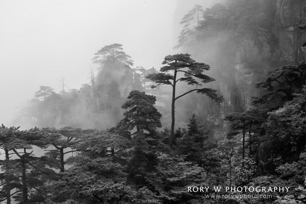 Huangshan China in Fog Print