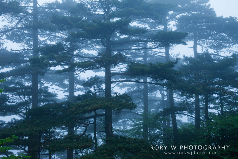Huangshan Dreamland in China Print