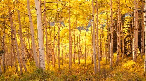 Autumn in Northern Utah Photo Gallery