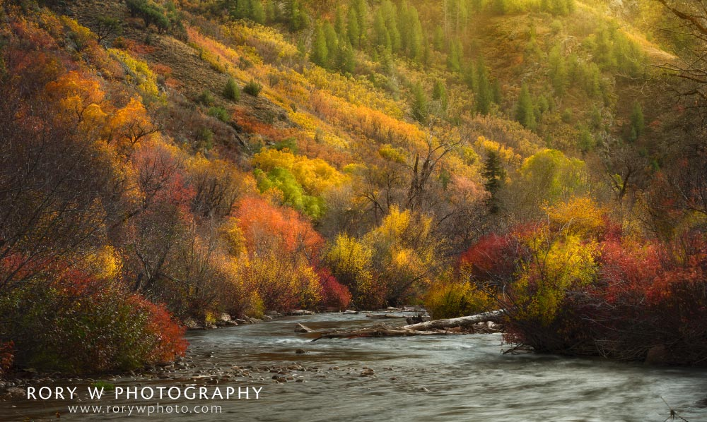 Autumn River Print