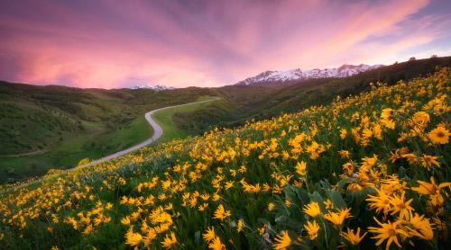 Spring & Summer in Northern Utah Photo Gallery