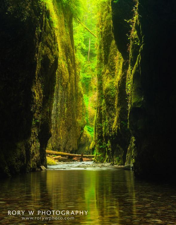 Oneonta Gorge Oregon Print